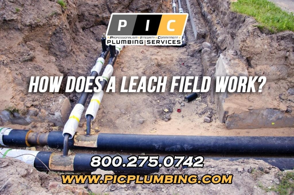 How Does a Leach Field Work in San Diego California