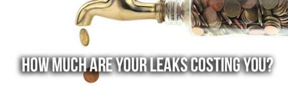 How Much Money Can You Save By Fixing Your Drain Line in San Diego