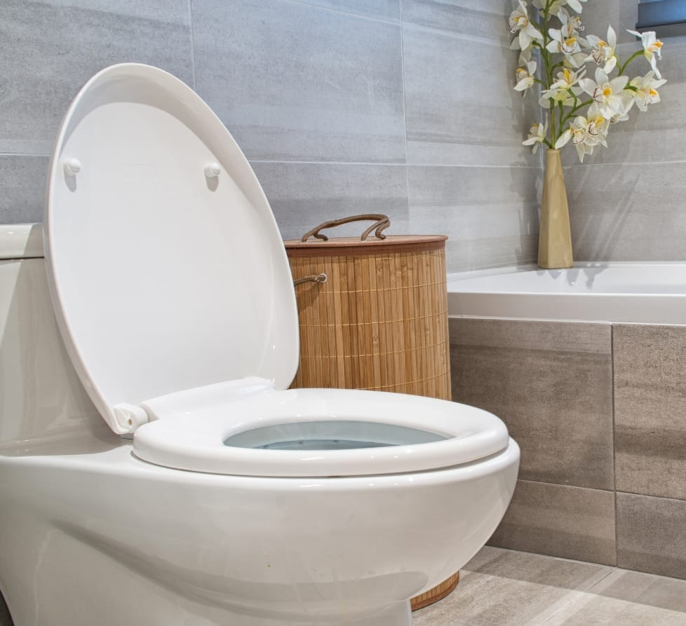 5 Things You Shouldn't Flush Down The Toilet In San Diego
